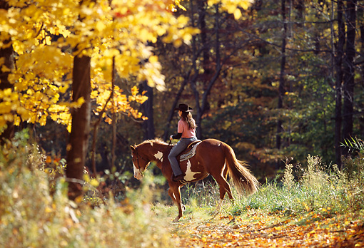 PEO 04 DS0003 01 © Kimball Stock Woman Riding Horse In Autumn Forest