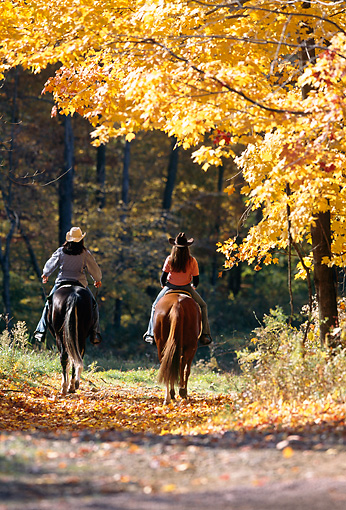 PEO 04 DS0004 01 © Kimball Stock Two Women Riding Horses In Autumn Forest
