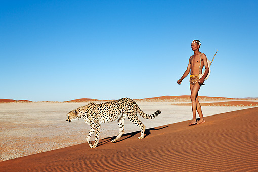 PEO 08 MH0007 01 © Kimball Stock San Hunter Walking With Traditional Bow And Arrow And Cheetah Namibia