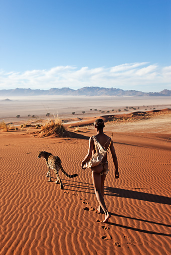 PEO 08 MH0008 01 © Kimball Stock San Hunter Walking With Traditional Bow And Arrow And Cheetah Namibia