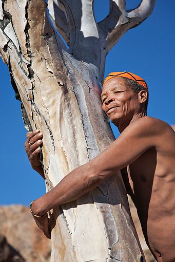 PEO 08 MH0014 01 © Kimball Stock Portrait Of Elderly San Man Hugging Quiver Tree Namibia