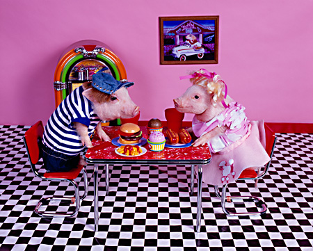PIG 01 RK0233 02 © Kimball Stock Hoggy Diner Two Pigs At Table On Checkered Floor By Juke Box