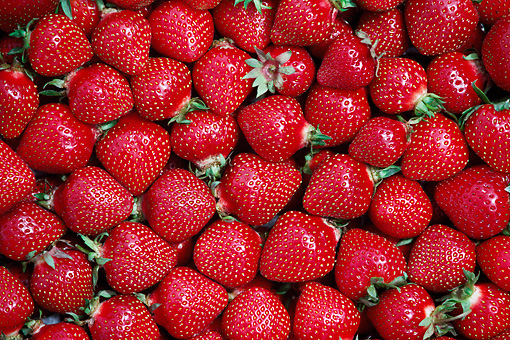 PUZ 01 GR0007 01 © Kimball Stock Strawberries