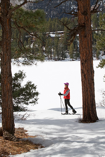 REC 02 RW0004 01 © Kimball Stock Person Cross-Country Skiing In Forest