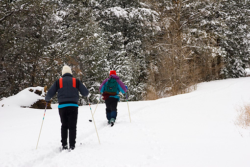 REC 02 RW0005 01 © Kimball Stock Two People Cross-Country Skiing In Forest