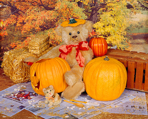 TED 01 RK0021 01 © Kimball Stock Teddy Bear With Pumpkins  Tracey Roe Bears