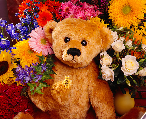 TED 01 RK0052 02 © Kimball Stock Light Brown Teddy Bear Surrounded By Flowers Bee On Hand