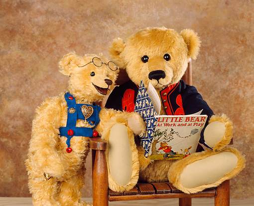TED 01 RK0070 04 © Kimball Stock Teddy Bears Reading Book
