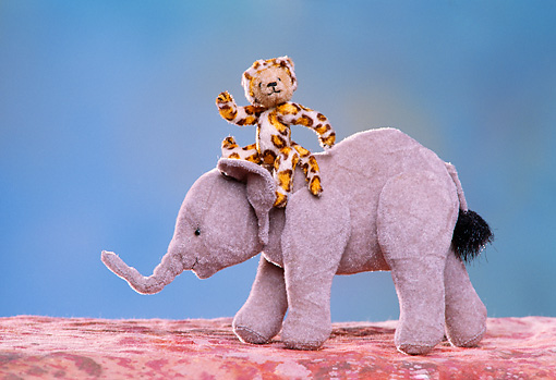 TED 01 RK0095 18 © Kimball Stock Stuffed Animal Leopard Riding Elephant Blue Background  Roger Morris/Fortunato