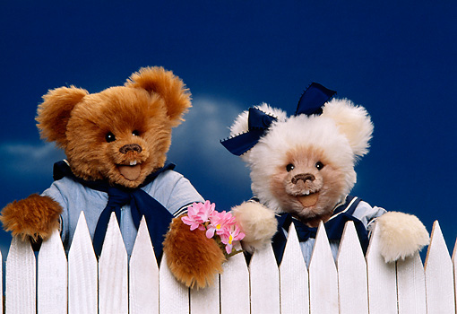 TED 01 RK0342 05 © Kimball Stock Two Teddy Bears By White Picket Fence Blue Sky  Dinni Dick Bears