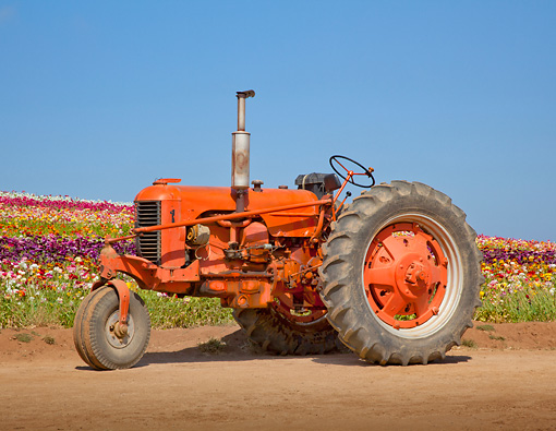 TRA 01 RK0174 01 © Kimball Stock 1945 J.I. Case DC Tractor Red Profile View On Dirt By Field Of Flowers