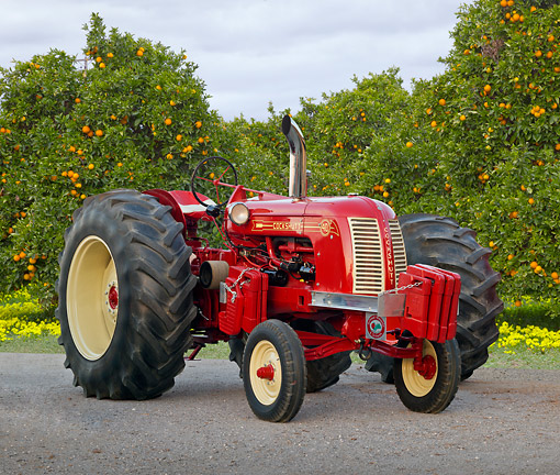 TRA 01 RK0198 01 © Kimball Stock 1949 Cockshutt 40 Tractor Red 3/4 Front View On Pavement By Orange Trees