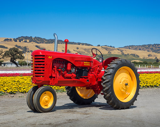 TRA 01 RK0251 01 © Kimball Stock 1948 Massey-Harris 44 GR Tractor Red And Yellow 3/4 Side View On Gravel By Field Of Flowers
