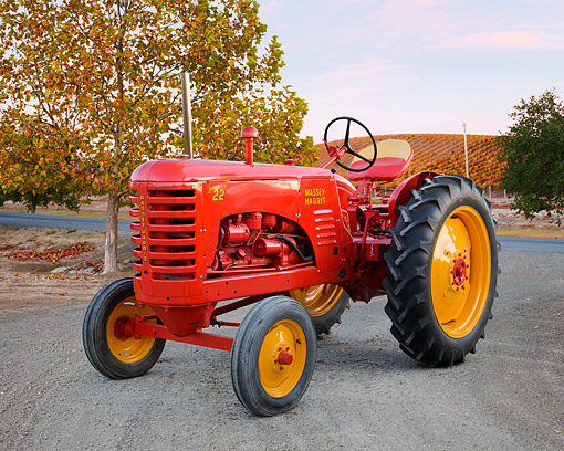 TRA 01 RK0317 01 © Kimball Stock 1951 Massey-Harris 22 Tractor Red 3/4 Front View On Gravel By Autumn Vineyard