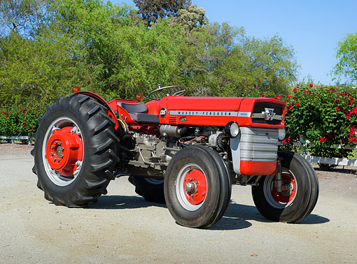 TRA 01 RK0326 01 © Kimball Stock 1963 Massy Ferguson 135 Tractor Red 3/4 Front View On Gravel By Shrubs