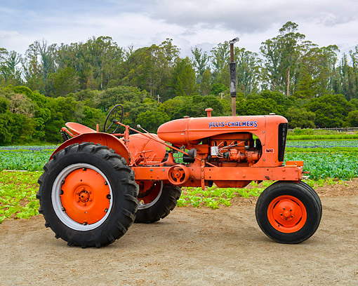 TRA 01 RK0370 01 © Kimball Stock 1939 Allis Chalmers WC Tractor Orange Profile View On Farm