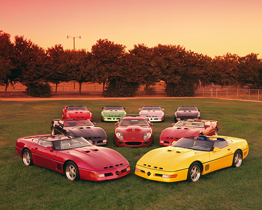 VET 01 RK0412 01 © Kimball Stock A Group Of Corvette Callaways On Grass By Trees