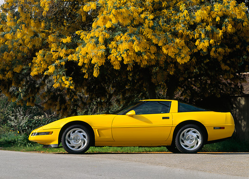 VET 01 RK0060 01 © Kimball Stock 1995 Chevrolet Corvette Yellow Low Profile View On Pavement