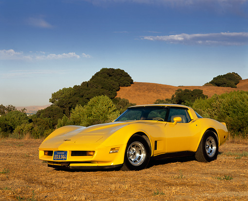 VET 01 RK0464 02 © Kimball Stock 1981 Chevrolet Corvette Yellow Low 3/4 Front View On Dry Grass Trees And Hills