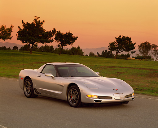 VET 01 RK0507 02 © Kimball Stock 2001 Chevrolet Corvette Z06 Silver 3/4 Front View On Pavement By Grass Filtered
