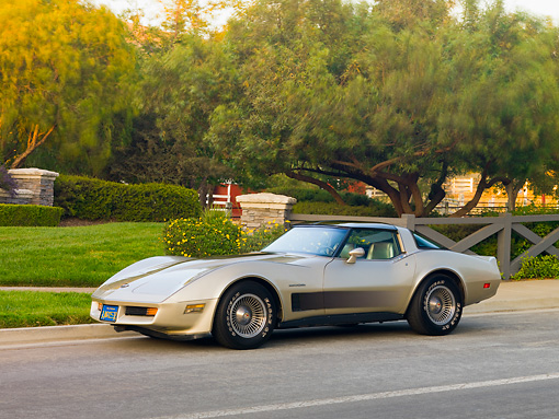 VET 01 RK0887 01 © Kimball Stock 1982 Chevrolet Corvette Collector Edition Silver Beige 3/4 Front View By Trees
