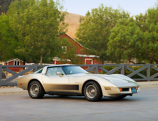 VET 01 RK0888 01 © Kimball Stock 1982 Chevrolet Corvette Collector Edition Silver Beige 3/4 Front View By Trees
