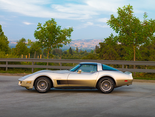 VET 01 RK0889 01 © Kimball Stock 1982 Chevrolet Corvette Collector Edition Silver Beige Profile View By Trees