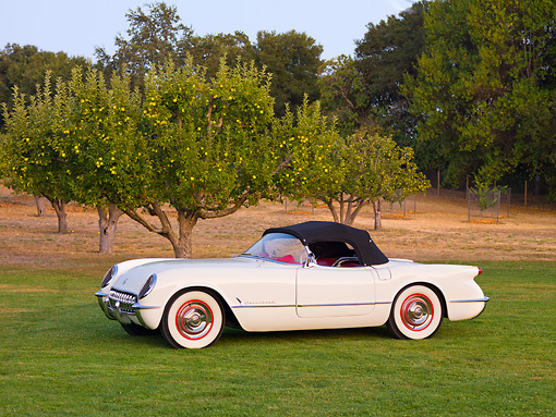 VET 02 RK0326 01 © Kimball Stock 1953 Chevrolet Corvette Convertible White 3/4 Front View On Grass By Trees