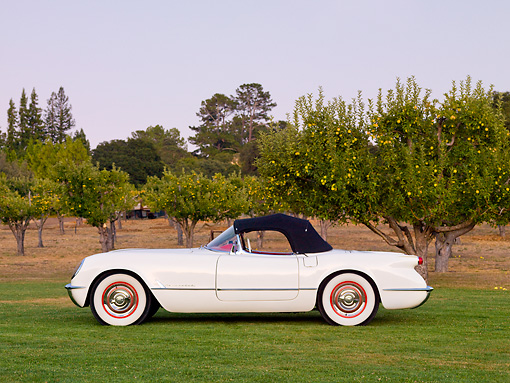 VET 02 RK0327 01 © Kimball Stock 1953 Chevrolet Corvette Convertible White Profile View On Grass By Trees