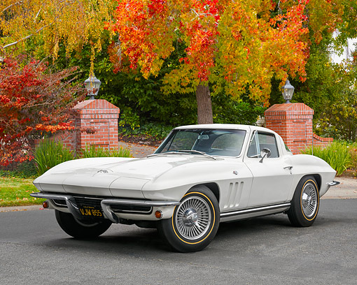 VET 03 RK0848 01 © Kimball Stock 1965 Chevrolet Corvette White 3/4 Front View By Gate And Trees