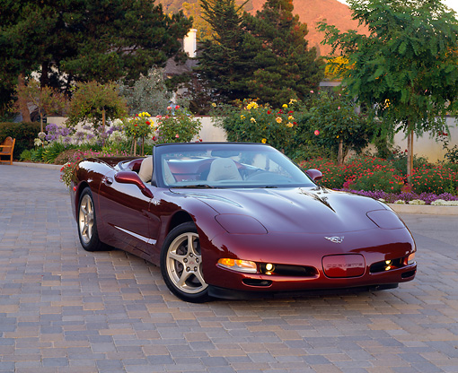 VET 04 RK0022 02 © Kimball Stock 2003 Chevrolet Corvette 50th Anniversary Edition Burgundy 3/4 Front View By Flowers  Front 3/4 View On Pavement By Flowers And Trees