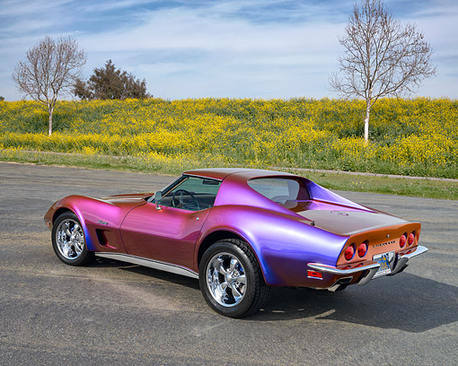 VET 05 RK0260 01 © Kimball Stock 1973 Chevrolet Corvette Harlequin 3/4 Rear View On Pavement By Field Of Wildflowers