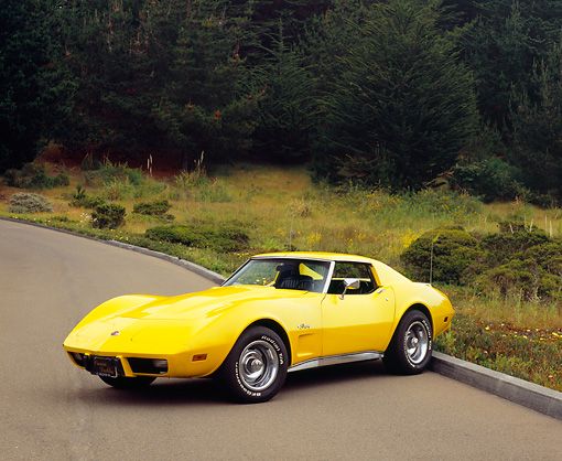 VET 05 RK0122 02 © Kimball Stock 1976 Chevrolet Corvette Stingray Yellow 3/4 Front View On Pavement By Bushes