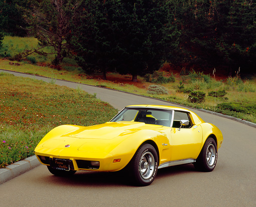 VET 05 RK0127 02 © Kimball Stock 1976 Chevrolet Corvette Stingray Yellow 3/4 Front View On Pavement By Bushes