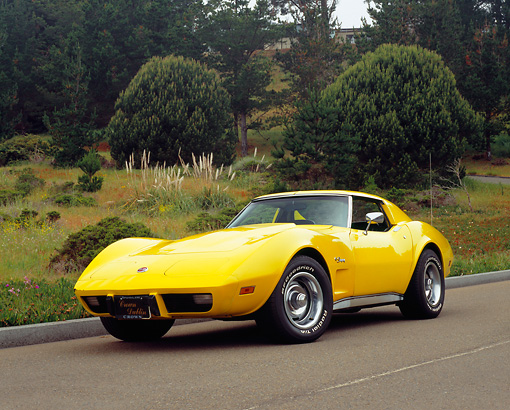 VET 05 RK0128 02 © Kimball Stock 1976 Chevrolet Corvette Stingray Yellow Low 3/4 Front View On Pavement By Bushes