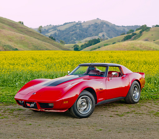 VET 05 RK0198 01 © Kimball Stock 1976 Chevrolet Corvette Stingray Red And Black 3/4 Front View In Field Of Yellow Wildflowers