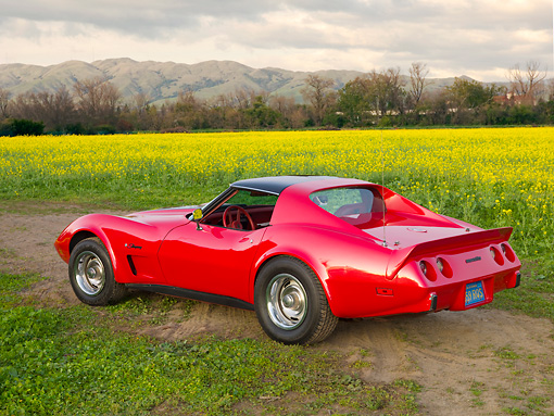 VET 05 RK0200 01 © Kimball Stock 1976 Chevrolet Corvette Stingray Red And Black 3/4 Rear View By Field Of Yellow Wildflowers
