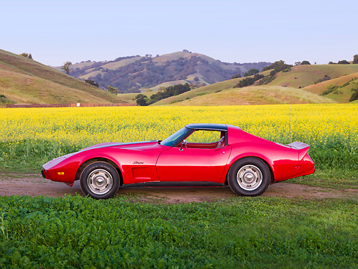 VET 05 RK0203 01 © Kimball Stock 1976 Chevrolet Corvette Stingray Red And Black Profile View By Field Of Yellow Wildflowers