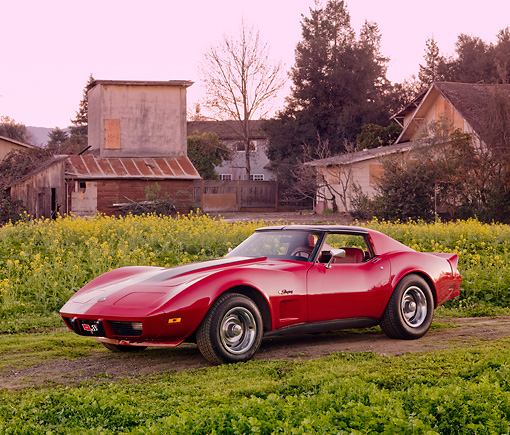 VET 05 RK0204 01 © Kimball Stock 1976 Chevrolet Corvette Stingray Red And Black 3/4 Front View By Field Of Yellow Wildflowers