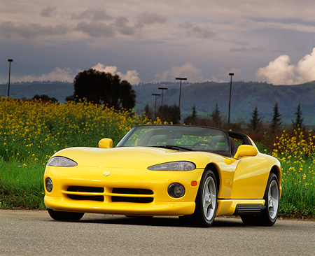 VIP 01 RK0069 01 © Kimball Stock 1995 Dodge Viper Yellow 3/4 Front View On Road By Grass Flower Field Gray Skies