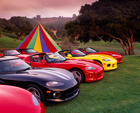 VIP 03 RK0033 02 © Kimball Stock Group of Dodge Vipers Parked On Grass In A Row