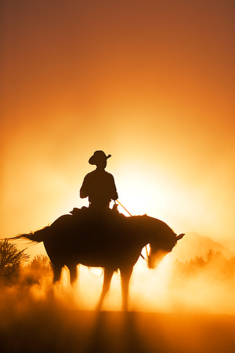 WRG 01 KH0001 01 © Kimball Stock Silhouette Of Wrangler On Horse Standing In Dusty Sunset