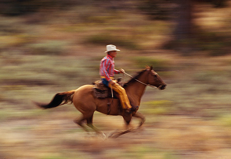 WRG 01 RK0225 08 © Kimball Stock Wrangler Bert Riding On Horse Profile Blurry Field
